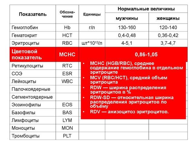 Mchc в анализе крови: норма и расшифровка отклонений, если показатель повышен или понижен