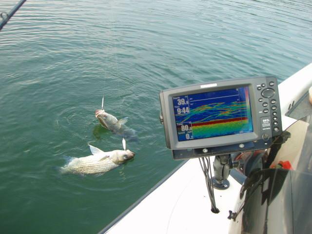Эхолот для рыбалки с лодки: какой лучше выбрать и как пользоваться? особенности двухлучевого эхолота для лодки с мотором и его принцип работы, отзывы