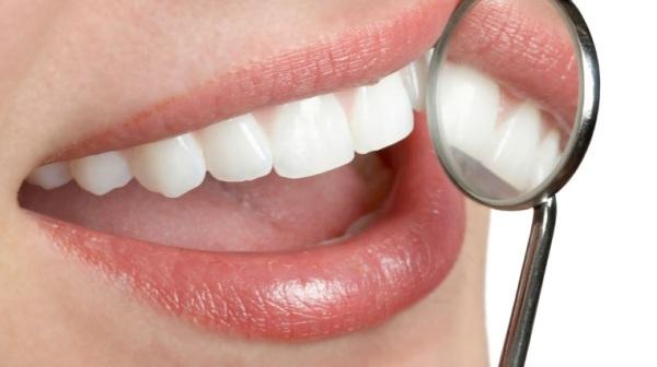 Пульпа зуба — википедия. что такое пульпа зуба