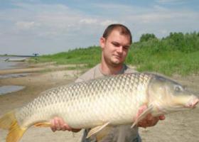 Сазан рыба: описание с фото, места обитания, нерест, рыбалка