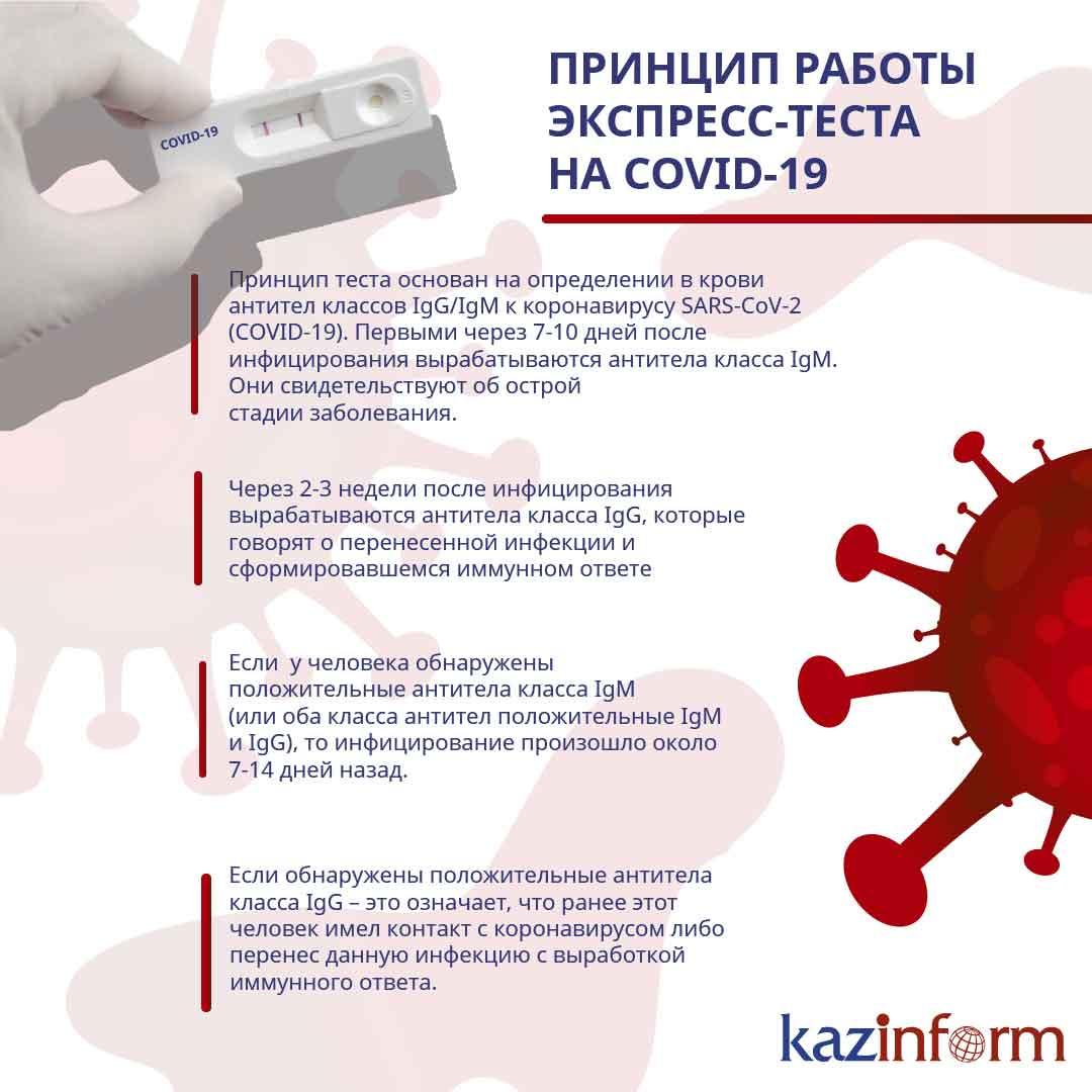 Анча баранова— о том, нужноли делать тест на антитела к коронавирусу :: рбк тренды