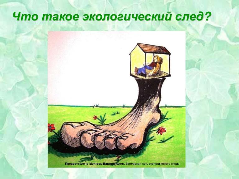 Экологический след - ecological footprint - qwe.wiki