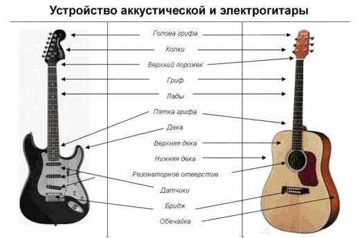 Из чего состоит гитара — это нужно знать | аккорды песен, табы, подборки