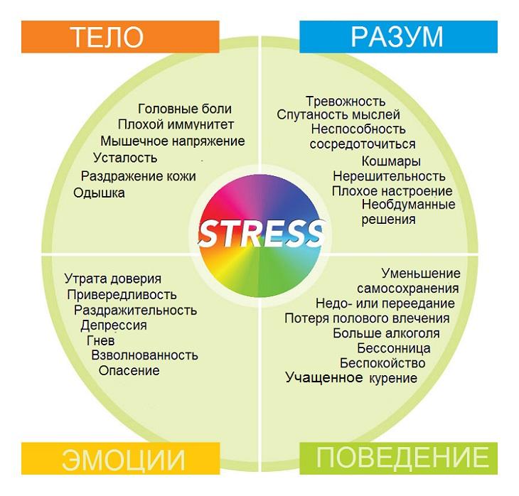 Что такое стресс: виды, стадии, причины, признаки, симптомы