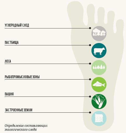 Экологический след человека | блог евгения курашова