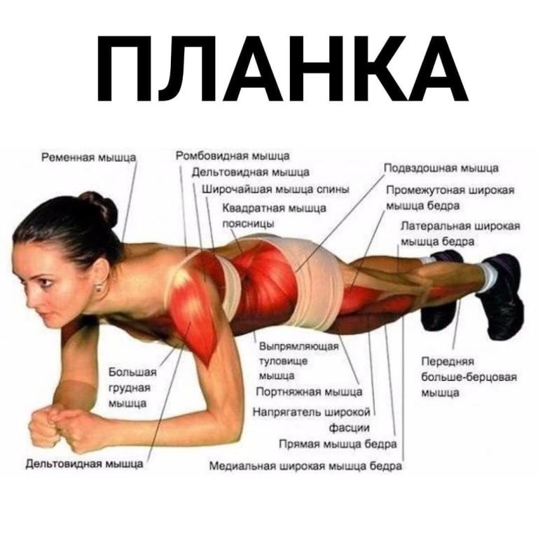Что такое упражнение планка и как его делать правильно