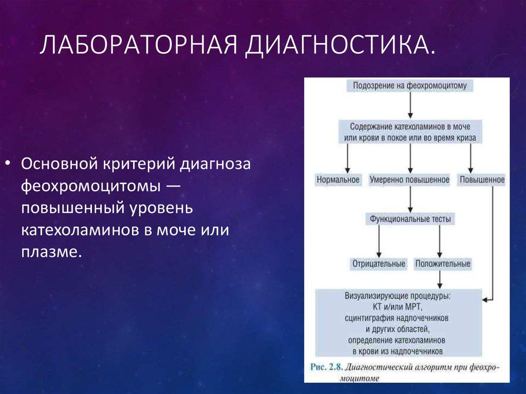 Феохромоцитома: симптомы, лечение, диагностика и фото
