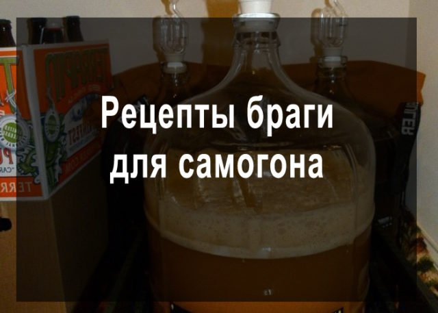 Брага: вред, рецепты, разновидности напитка | food and health